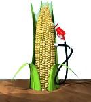biogorivo.jpg
